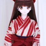 袴下の着物と帯
